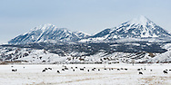 Winter scenery near Crawford, Colorado.