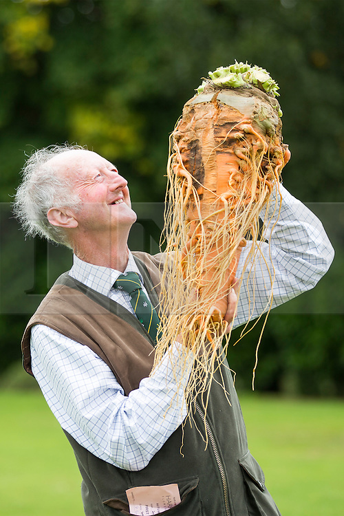 © Licensed to London News Pictures. 16/09/2016. Harrogate UK. Picture shows Peter Glazebrook & his prize winning carrot that weighed 7.9 kg at the Giant vegetable competition in Harrogate. The competition see's competitors from across the UK show their biggest Carrot's, Cucumbers, Cabbages, Onion's & Tomatoes competing for the title of heaviest & longest at the Harrogate Autumn Flower Show. Photo credit: Andrew McCaren/LNP