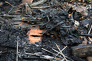 Fire damage to a structure at the Ruskin Park Community Garden, on 21st August 2019, in London, England. The Community Garden is a source of education and enthusiasm for growing vegetables and encouraging inner city gardening to reduce the carbon output involved in food production and transport. They receive grants from Capital Growth and the Lambeth Community Action Fund and were nominated for funding under the Lambeth Community Action Fund 2009/10 by the Herne Hill Ward Councillors.