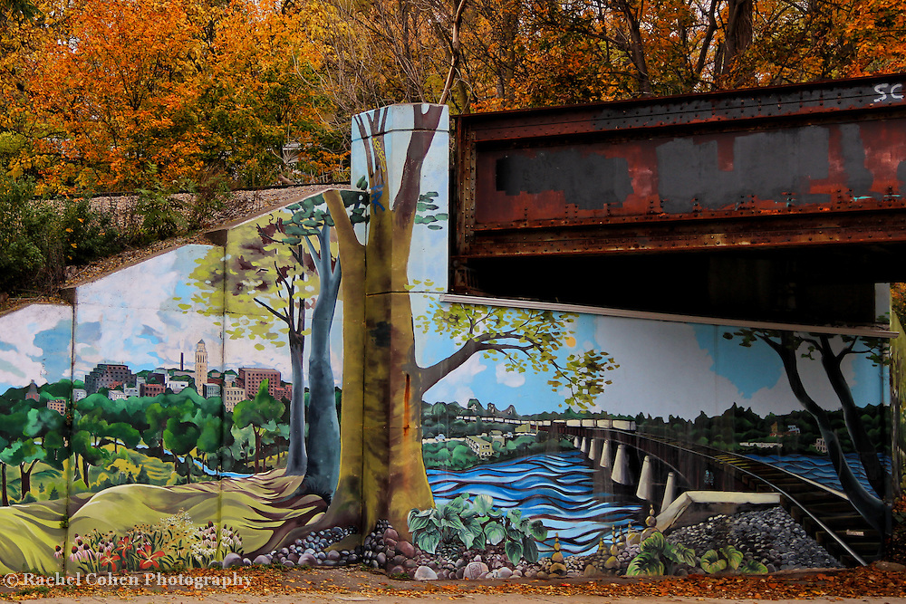 &quot;Ann Arbor in Mural&quot;<br />