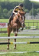 Martina Hingis (SUI) trainiert mit ihrer Stute Lytizia, springt ueber Hindernis zuhause in Hurden in der Schweiz, 17.08.2004,..Foto: Juergen Hasenkopf
