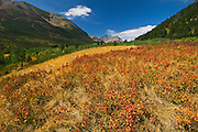 autumn scenic <br /> Waterton Lakes National Park<br /> Alberta<br /> Canada