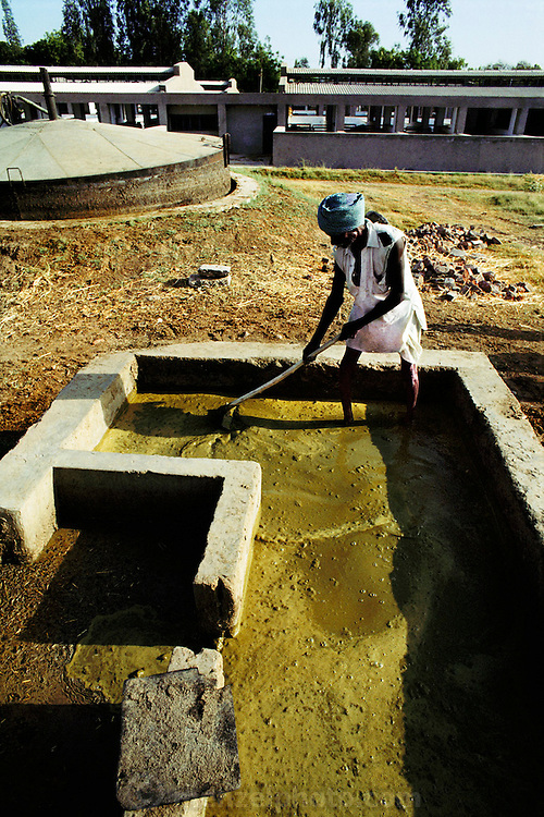 Manual laborer stirring cow manure at a unit producing methane gas from manure. The methane production unit is located on a farm belonging to the National Dairy Development Board at Anand, Gujarat, India. (1986).