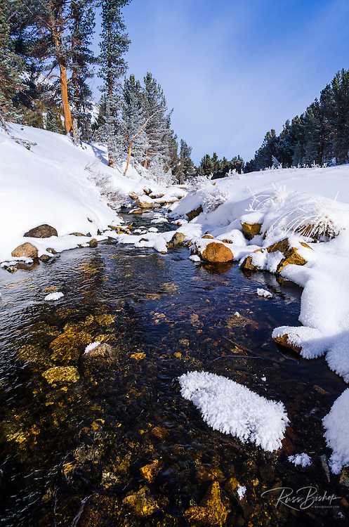 Rock Creek in winter, John Muir Wilderness, Sierra Nevada Mountains, California  USA