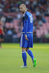 Matthew Connolly of Cardiff City - Mandatory by-line: Paul Terry/JMP - 07966386802 - 31/07/2015 - SPORT - FOOTBALL - Bournemouth,England - Dean Court - AFC Bournemouth v Cardiff City - Pre-Season Friendly