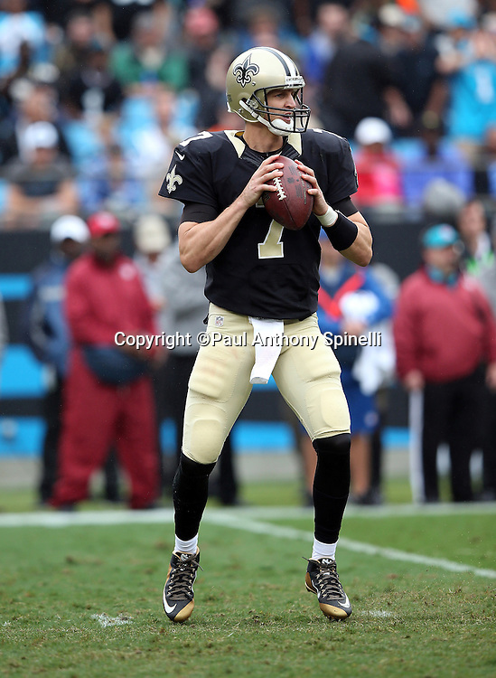 New Orleans Saints quarterback Luke McCown (7) drops back to pass during the 2015 NFL week 3 regular season football game against the Carolina Panthers on Sunday, Sept. 27, 2015 in Charlotte, N.C. The Panthers won the game 27-22. (©Paul Anthony Spinelli)