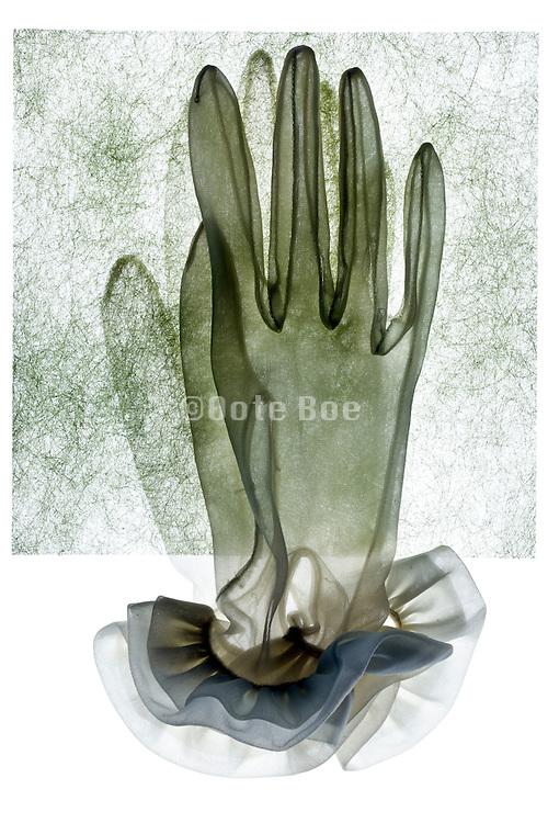 pair of white translucent gloves