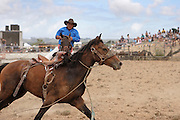 a pick up rider pursues a riderless horse at the Hellensville Rodeo, Auckland, New Zealand