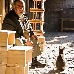 Man and a cat, Diyarbakir, Turkey, Asia