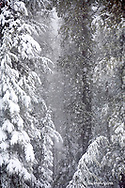 Heavy snowfall in the Bitterroot Mountains @ Lookout Pass on the Montana and Idaho stateline