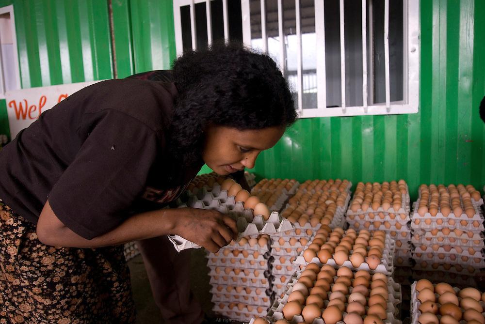 La ferme Maranatha du Hollandais Gert Van Putten comprend environ 20 000 poulets exploités pour leurs œufs. Ces employées récoltent et préparent du trèfle pour nourrir les poulets, comptent et emballent les oeufs. Cela fait vingt ans que le Hollandais Gert Van Putten a installé sa ferme Genesis en bordure de Debre Zeit, à une heure d'Addis Abeba. Il a plus de 600 employés. Ses activités principales sont l'élevage de bétail et de poulet, la production d'œufs, d'aubergines, de salades, onions, alfalfa, etc. Van Putten possède un super marché et a aidé des centaines d'Éthiopiens à se lancer dans l'élevage de poulets. Debre Zeit août 2011.