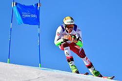 SALCHER Markus, LW9-1, AUT, Giant Slalom at the WPAS_2019 Alpine Skiing World Cup, La Molina, Spain