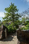 Newtown Creek Nature Walk.