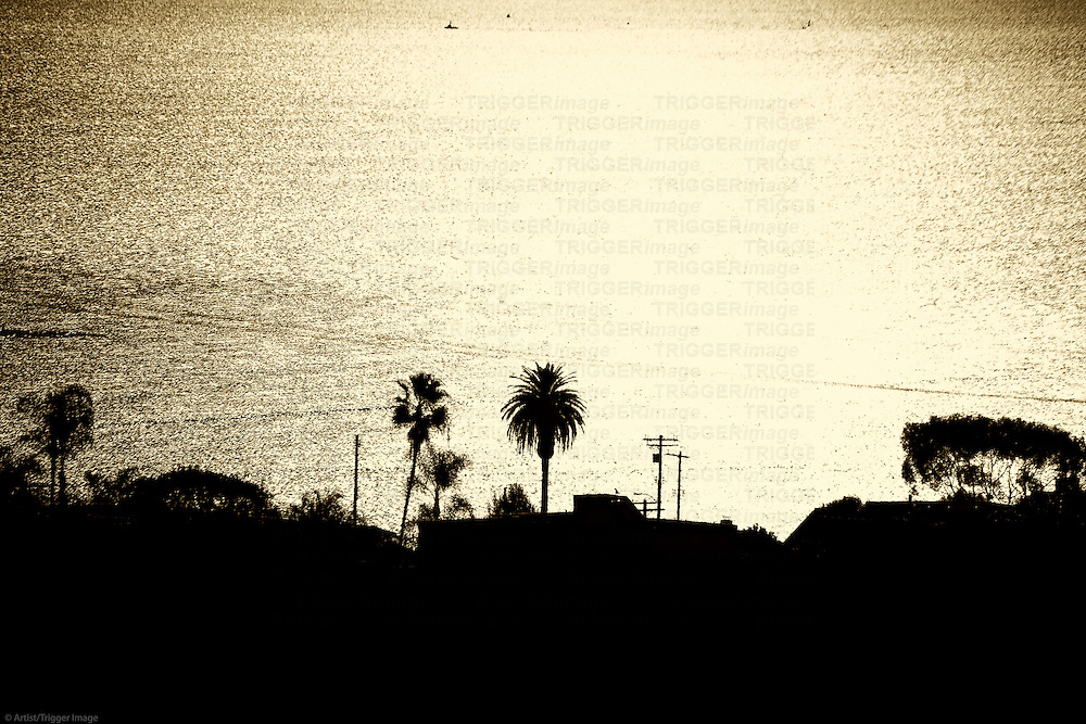 A golden sunset with sparkling  water and palm silhouettes at the Port of Los Angeles.