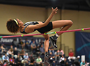 Mar 5, 2017; Albuquerque, NM, USA; Vashti Cunningham wins the women's high jump at 6-5 (1.96m) during the USA Indoor Championships at the Albuquerque Convention Center.