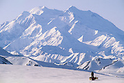 Winter, Snow, Mount McKinley, Mt. McKinley, Dog musher, Dogs, Sled Dog, Dog sled, Dog Sledding, mushing, Denali National Park, Alaska