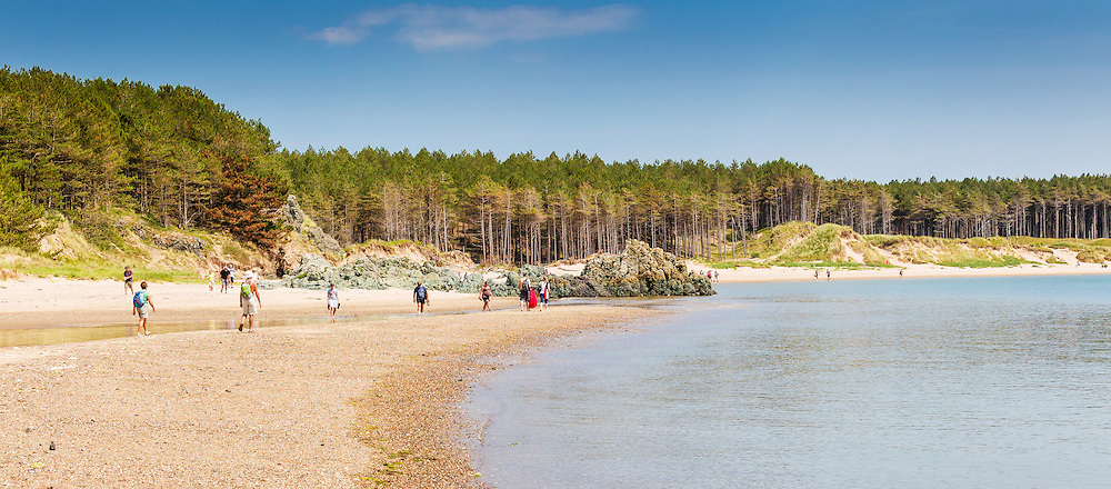 Visitors enjoy a fine July day on Newborough Beach - with Newborough Forest behind the dunes.