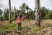 Janya Ruangthong, 36, a member of the Klong Sai Pattana community takes part in a communal planting session to plant corn on what was a palm oil plantation.<br /> <br /> Since 2008, this community of around 70 families have been embroiled in a conflict with a palm oil company that locals allege has been trying to violently evict them. Since 2010, four members of the community have been shot dead and a fifth shot, but survived.<br /> <br /> For decades the palm oil company Jiew Kang Jue Pattana Co., Ltd has illegally occupied and cultivated palm oil trees on a 535-acre plot of land in the Chai Buri District of Surat Thani Province. <br /> <br /> The company operated with no official legal documentation or land concession, until the Southern Peasant's Federation of Thailand (SPFT), who supports the community, began investigating them and collecting evidence.<br /> <br /> This evidence ultimately lead to a Supreme Court ruling against the company for illegal trespassing and land encroachment. But the community still struggles to remain on the land to this day with the last shooting happening in April 2016, years after the court case was won.
