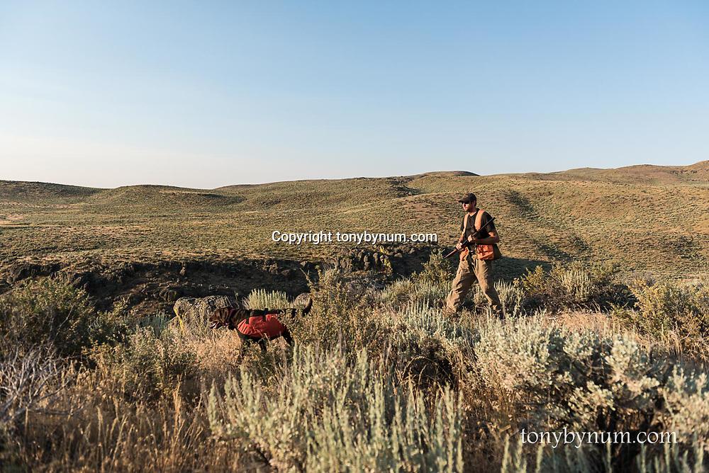 man with dog hunting upland birds