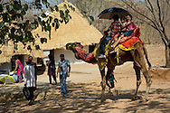 Tourists on a camel at the Shipgram Craftsmen's Village;  Udaipur, Rajasthan,<br /> India