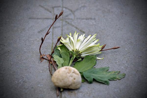 Nederland, Nijmegen, 5-9-2018Graven op de begraafplaats aan de Daalseweg in de stad. Hiet veel bekende en rijke inwoners, en er staan ook praalgraven .Foto: Flip Franssen