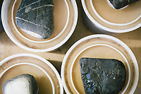 """PISCIOTTA, ITALY - 22 APRIL 2018: Rocks used as weights are seen here on top of the PVC containers packed with salted alici di Menaica (Menaica anchovies) in the processing workshop of """"Alici di Menaica"""", owned by the Donatella Marino and her husband Vittorio Rimbaldo, in Pisciotta, Italy, on April 22nd 2018.<br /> <br /> Former restaurant owners Donatella Marino and her husband Vittorio Rimbaldo have spent the recent years preparing and selling salted anchovies, called alici di menaica, to a growing market thanks to a boost in visibility from the non-profit Slow Food.  The ancient Menaica technique is named after the nets they use brought by the Greeks wherever they settled in the Mediterranean. Their process epitomizes the concept of slow food, and involves a nightly excursion with the special, loose nets that are built to catch only the larger swimmers. The fresh, red anchovies are immediately cleaned and brined seaside, then placed in terracotta pots in between layers of salt, to rest for three months before they're aged to perfection.While modern law requires them to use PVC containers for preserving, the government recently granted them permission to use up to 10 chestnut wood barrels for salting in the traditional manner. The barrels are """"washed"""" in the sea for 2-3 days before they're packed with anchovies and sea salt and set aside to cure for 90 days. The alici are then sold in round terracotta containers, evoking the traditional vessels that families once used to preserve their personal supply.<br /> <br /> Unlike conventional nets with holes of about one centimeter, the menaica, with holes of about one and half centimeters, lets smaller anchovies easily swim through. The point may be to concentrate on bigger specimens, but the net also prevents overfishing."""