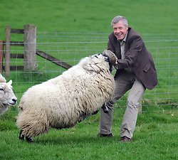 Willie Rennie, Kelty, 21-4-2017<br /> <br /> Willie Rennie tries to control a sheep<br /> <br /> (c) David Wardle | Edinburgh Elite media