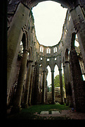 France, Normandy.  Abbaye de Hambye.  Built 1145, now a ruin.
