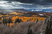 Grand Mesa - Colorado Fall Colors