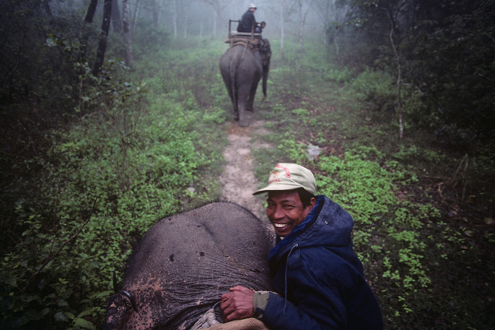 Nepal, Royal Chitwan National Park, Mahout (elephant handler) climbs onto elephant during safari in rainforest jungle