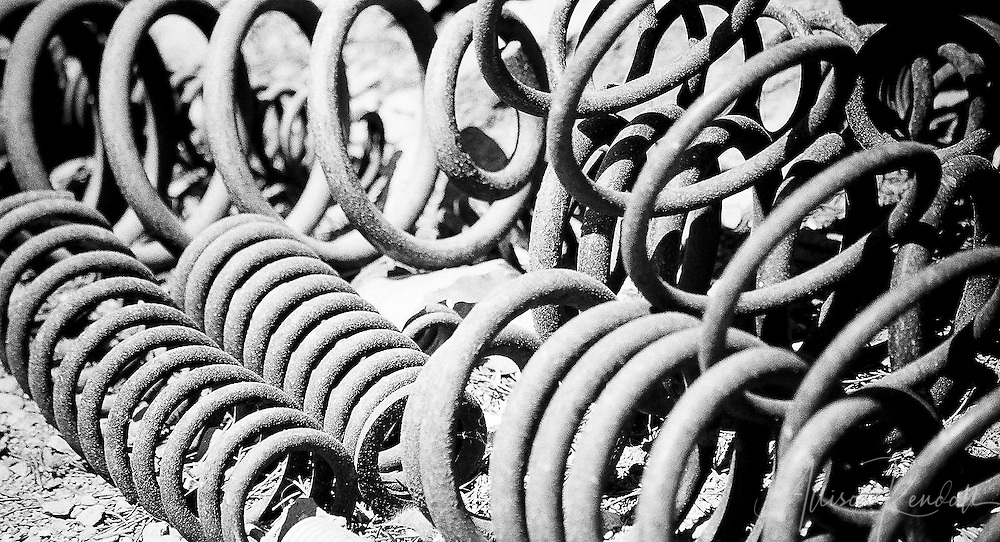 An informal collection of discarded machinery coils and springs gathers dust in the desert sun of a sculptor's garden.