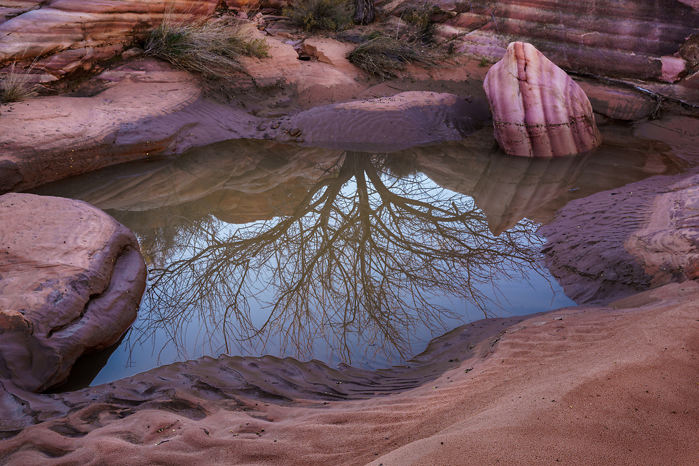 Reflections and patterns in the mud, Valley of Fire State Park, Nevada, USA