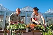 20110505 Plant Sale Preview