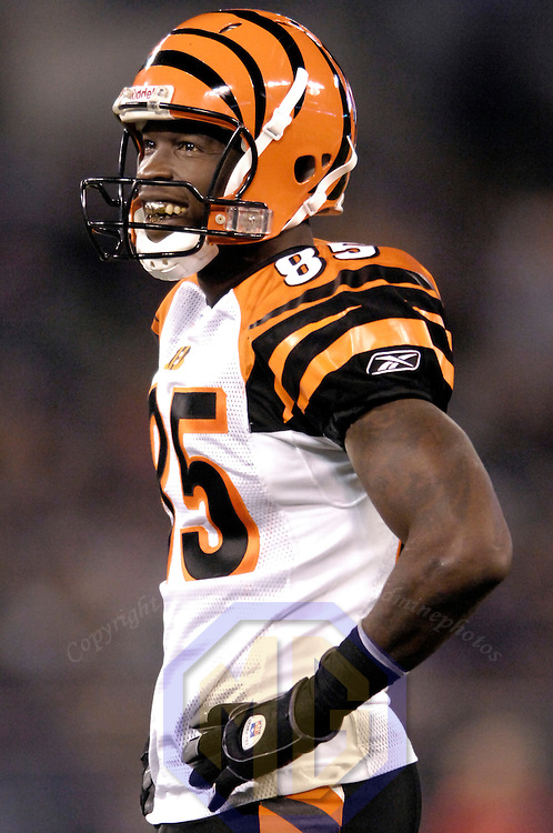 11 November 2007:  Cincinnati Bengals wide receiver Chad Johnson (85) smiles during a break in the action against the Baltimore Ravens in the 3rd quarter on November 11, 2007 at M&T Bank Stadium in Baltimore, Maryland. The Bengals defeated the Ravens 21-7 on the strength of 7 field goals..