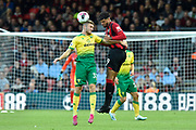 Dennis Srbeny (32) of Norwich City battles for possession with Philip Billing (29) of AFC Bournemouth during the Premier League match between Bournemouth and Norwich City at the Vitality Stadium, Bournemouth, England on 19 October 2019.