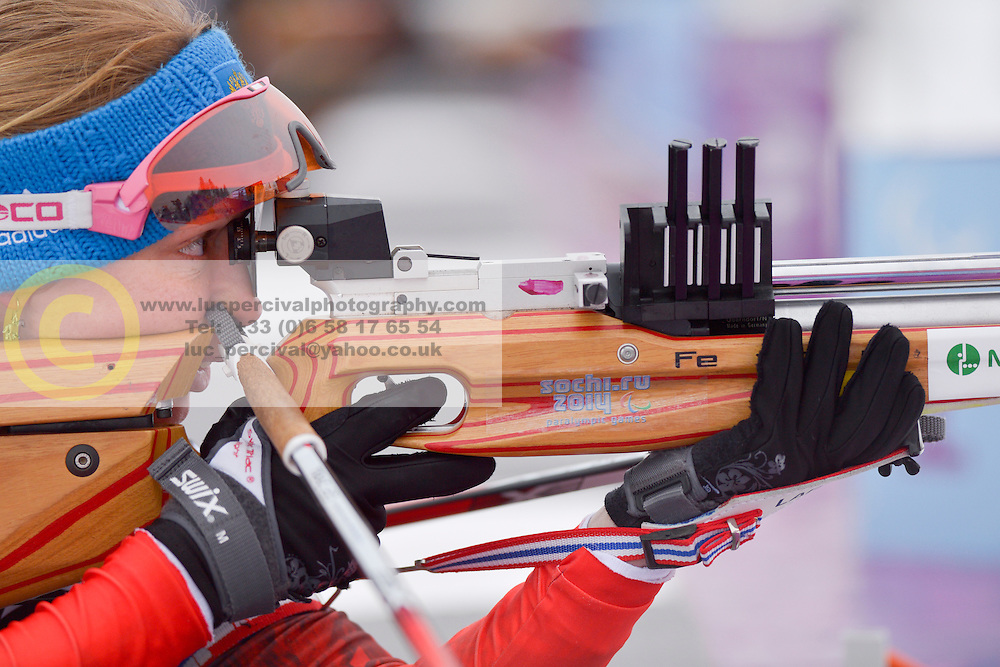 Biathlon at the 2014 Sochi Winter Paralympic Games, Russia