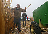 Robert Barry of Raymond, Nebraska tosses an ear of corn into the wagon as he makes he way down the row during the Iowa Hand Corn Husking Competition at the Amana Colonies RV Park and Event Center in Amana on Saturday October 13, 2012. Barry had a net weight of 141.26 pounds in his 20 minute round. 28 people were registered for the event from Illinois, Nebraska, South Dakota, and Iowa.