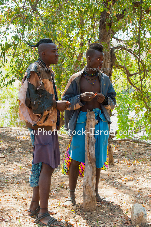 Himba men with traditional hair. The Himba are a pastoral and nomadic people of northern Namibia. They tend herds of goats and cattle in the arid desert environment, living in extended families in homesteads. Both men and women go topless. Photographed in Namibia, Southern Africa.