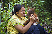 Bornean Orangutan<br /> Pongo pygmaeus<br /> Caretaker kissing one year old infant <br /> Orangutan Care Center, Borneo, Indonesia<br /> *No model release available - for editorial use only