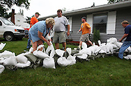 Massive flooding has covered the Midwest section of the United States. In Cedar Rapids, Iowa over 400 blocks were underwater. Other towns are now bracing for the water as it continues downstream.///Neighbours and volunteers help sandbag a house in Cedar Rapids, Iowa.