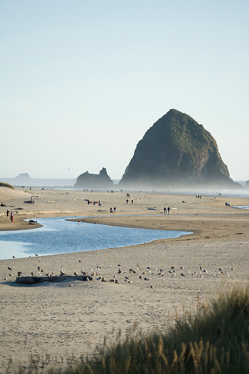 Scenic of Cannon Beach, Oregon.