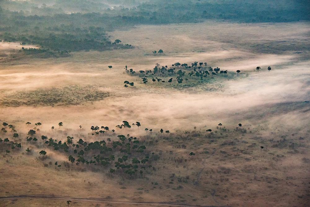 A foggy morning on the Masai Mara, Kenya