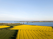 Fehmarn, Germany - May 11, 2019: Aerial drone view of Fehmarn Bridge and yellow rapeseed fields.