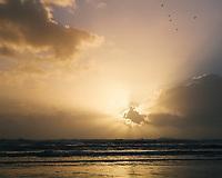 Sunset on the West Coast, South Island, New Zealand.