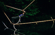 A female member of the Territorial Army hangs on to ropes before falling in pond water during weekend initiative manoeuvres