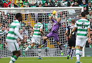 Dundee goalkeeper Scott Bain clutches a cross - Celtic v Dundee - Ladbrokes Premiership at Celtic Park<br /> <br /> <br />  - © David Young - www.davidyoungphoto.co.uk - email: davidyoungphoto@gmail.com