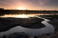 Contrails in Sky at Sunset over the Upper Newport Bay Ecological Reserve, Newport Beach, California