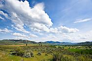 Farm fields outside of Twisp in the Methow Valley region of Washington State, USA.