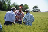 U.S. Wheat Tour near Cherokee