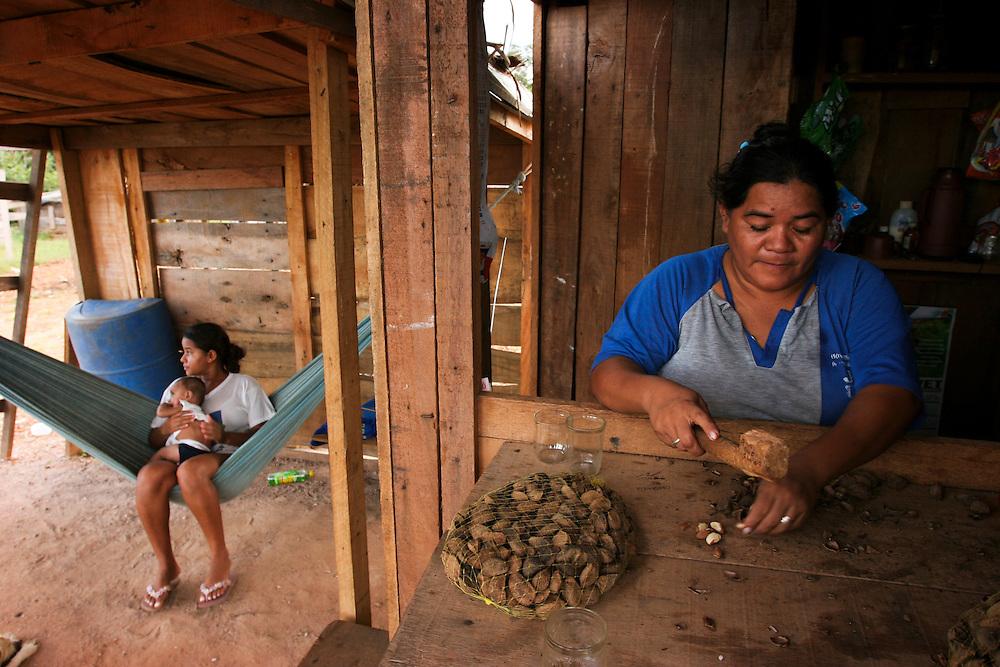 February 24th 2006, Maria a member of the MST (Movimineto Sem Terra) selling the fruit of the Castanheira (Brasilian Nut Tree) on the side of a road near Itauba, Mato Grosso, Brazil...©Daniel Beltra